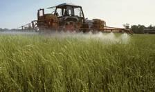 Pesticidele, o calamitate pentru om