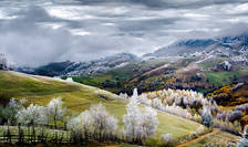 Eduard Guţescu-Land of Fairy Tales