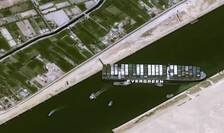 Blocaj în Canalul Suez (Sursa foto: comunicat Animals International)
