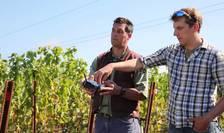 Din 10 absolvenți de agronomie care vin să se angajeze, Nicu Vasile păstrează doar unul