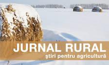 Plata subvențiilor începe în 28 februarie, după cum a anunțat ministrul agriculturii Petre Daea