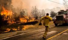 8.000 de pompieri încearcă să țină sub control cele 20 de incendii izbucnite în California