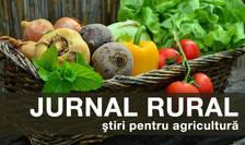 Producătorii de usturoi vor beneficia, începând din 2019, de un ajutor de minimis