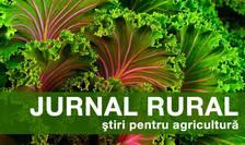 Ministrul Agriculturii caută o soluție alternativă la folosirea neonicotinoidelor