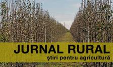 Șapte din zece români cred că agricultura și dezvoltarea rurală sunt subiecte importante pentru viitor