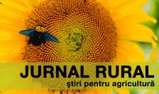 Fermierii completează cererea unică de plată folosind aplicaţia IPA-Online