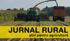 Agricultura ar putea înregistra, în 2016, cele mai bune rezultate din ultimul deceniu
