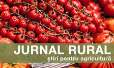 Noile reguli vor permite organizațiilor recunoscute ale fermierilor să planifice producția