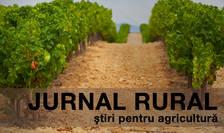 Fondul Mutual Agricol va acorda compensații financiare fermierilor în caz de calamitare