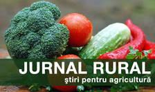 Agricultura de precizie se bazează pe gestionarea optimizată a resurselor de pe un câmp