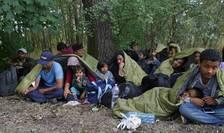 Imigranţi care au trecut ilegal graniţa dintre Serbia şi Ungaria (Foto: Reuters/Laszlo Balogh)