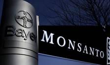 La un an după achiziţia Monsanto, pentru 63 de miliarde de dolari, grupul german Bayer a pierdut 45% din capital.
