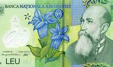 Banca Națională a anunțat vineri un curs de 4,8026 lei pentru un euro