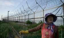 Locuitorii din apropierea zonei demilitarizate, ce desparte cele doua Corei, înca spera ca discutiile diplomatice sa duca la pacea mult dorita