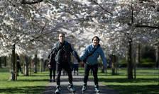 """În Marea britanie, parcurile sunt pline de oameni care încearcă să păstreze """"distanța socială"""" impusă de autorități"""
