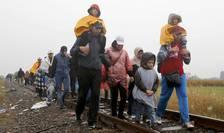Mii de refugiați trec zilnic din Serbia în Ungaria