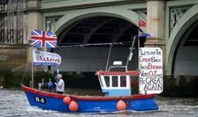 Activist pro-Brexit (Foto: AFP/Niklas Halle'n)