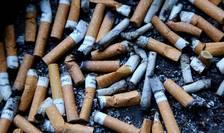 Mucurile de tigarà, un flagel pentru mediul înconjuràtor