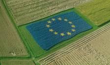 Noua Politică Agricolă Comună trebuie simplificată și modernizată