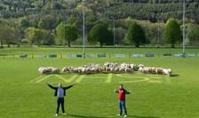 Oi pe terenul lui Brecon RFC