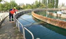 Polemici privind calitatea apei, în București (Sursa foto: site Apa Nova)