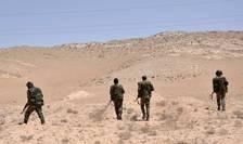 Armata sirianà se pozitioneazà în jurul orasului Palmira