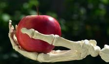 România este printre țările europene care consumă cel mai mult pesticid pentru agricultură.