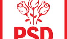 Conducerea PSD s-a intrunit astăzi în şedinţa Biroului Permanent Naţional