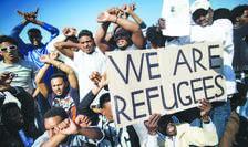 """Închiderea """"rutei Balcanilor"""" a dus la scăderea numărului de imigranți"""