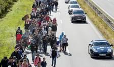 Imigranţi, cei mai mulţi din Siria, pe o şosea din Danemarca (Foto: Reuters/Bax Lindhardt/Scanpix)