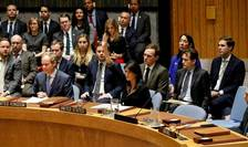 Reprezentanta SUA la ONU s-a opus de la începutul saptamanii proiectului de rezolutie care condamna decizia unilaterala, luata de presedintele Donald Trump de recunoastere a Ierusalimului drept capitala a Israelului