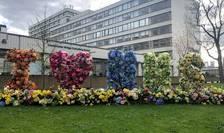 Spitalul St Thomas din Londra