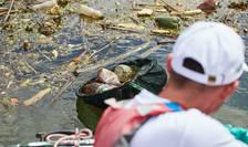 Nivel alarmant de poluare în apele României (Sursa foto: site Act for Tomorrow)