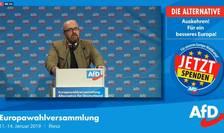 Partidul naţionalist-autoritar, Alternativa pentru Germania (AfD), a adoptat un program electoral eurosceptic şi şi-a desemnat candidaţii pentru alegerile europene