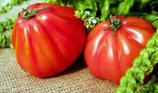 Roșiile cultivate de agricultori români au apărut pe tarabele piețelor la un preț prohibitiv pentru o parte a consumatorilor.