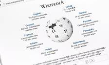 Wikipedia foloseste peste 300 de limbi si dialecte diferite.
