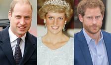 Prințul William, Diana - prințesă de Wales, Prințul Harry