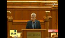 Deputatul PNL Florin Roman (captură video)