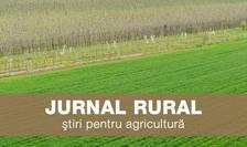 Jurnal Rural - livada si camp verde