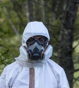Ecologiştii atrag atenţia asupra calităţii aerului în Bucureşti (Sursa foto: pixabay)
