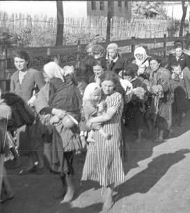 Evrei deportați de armata română (iulie 1941)