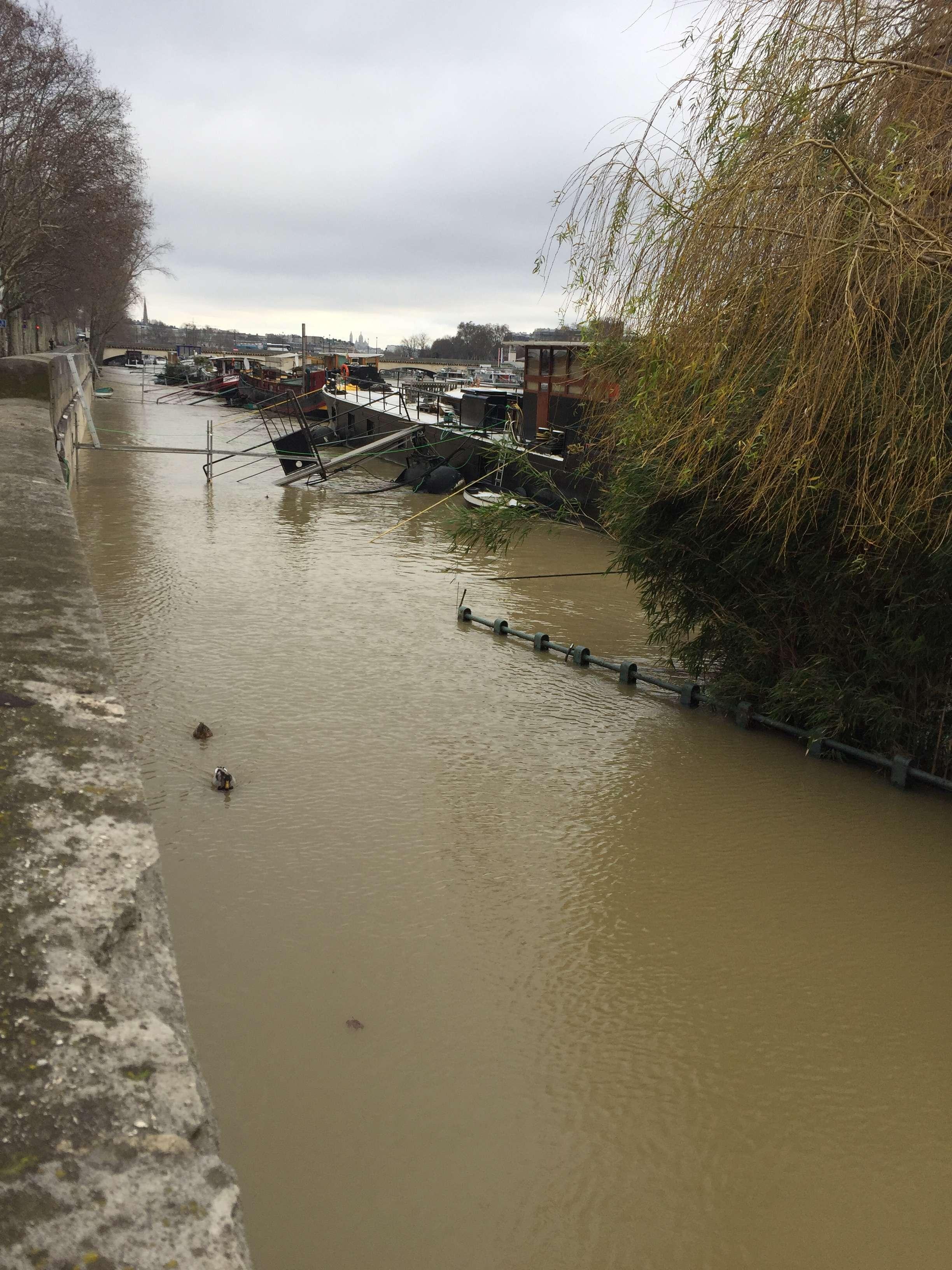 Turstii nu se mai pot plimba cu celebrele bateaux mouches pe Sena