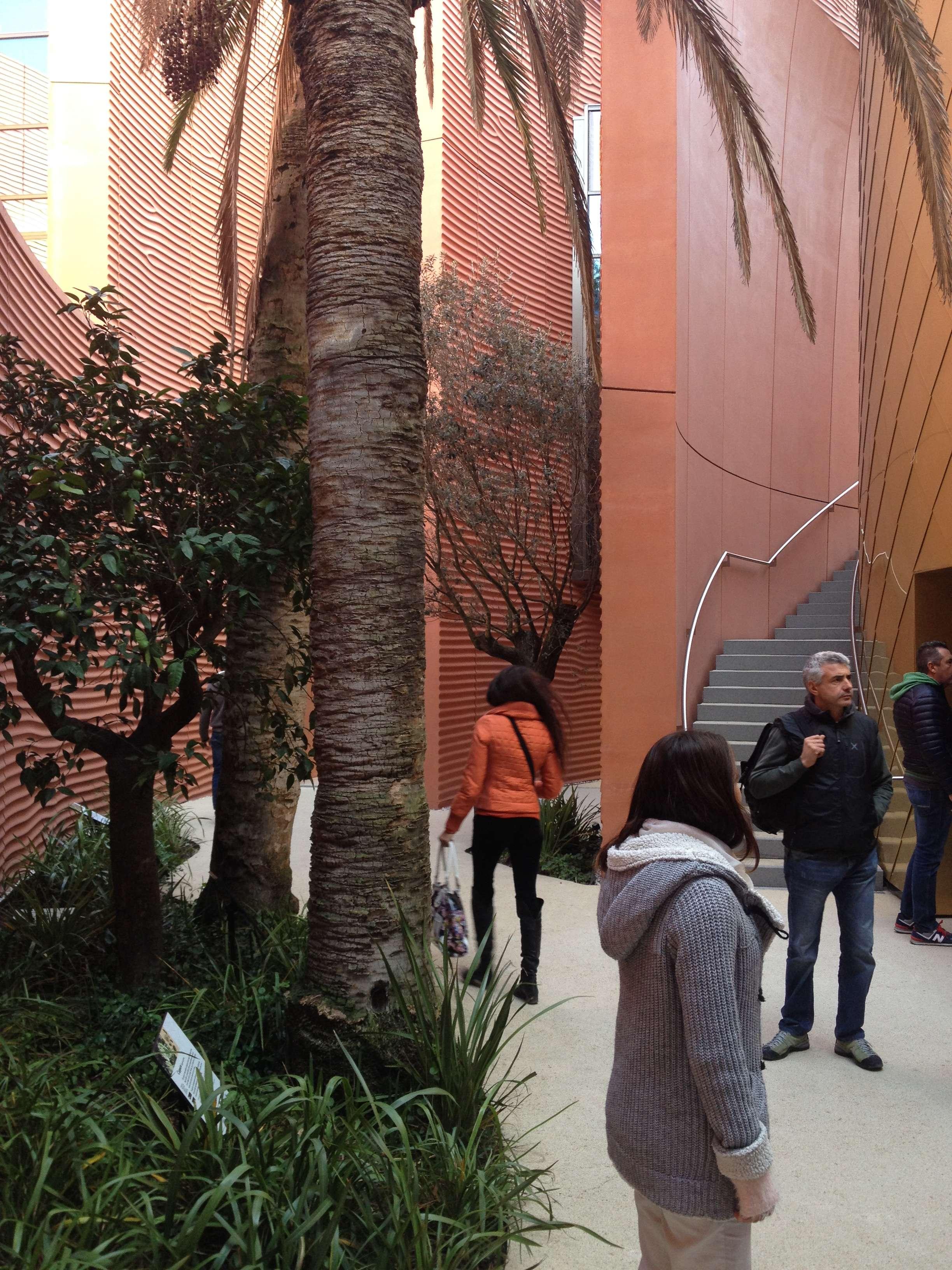 Vedere din spate al pavilionului EAU