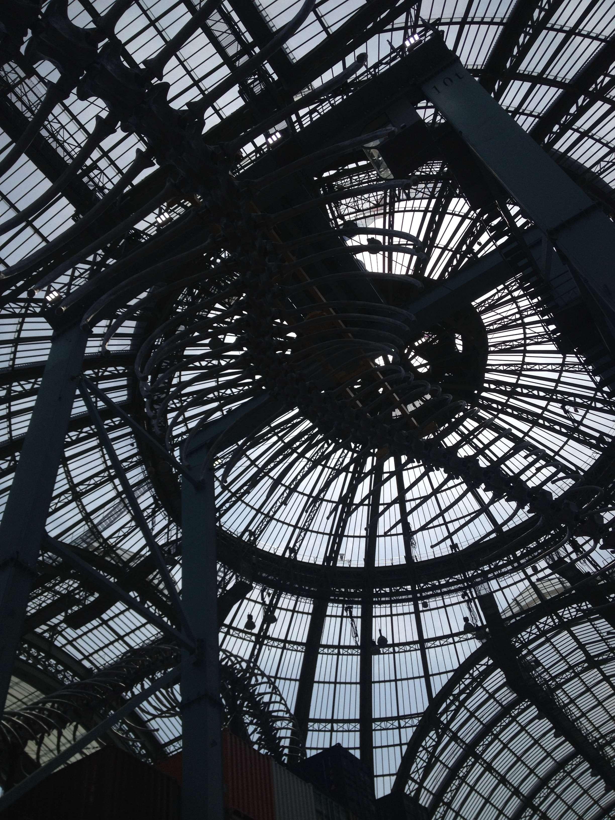 Cupola lui Grand Palais suba care se desfàsoarà uriasa operà a lui Huang Yong Ping