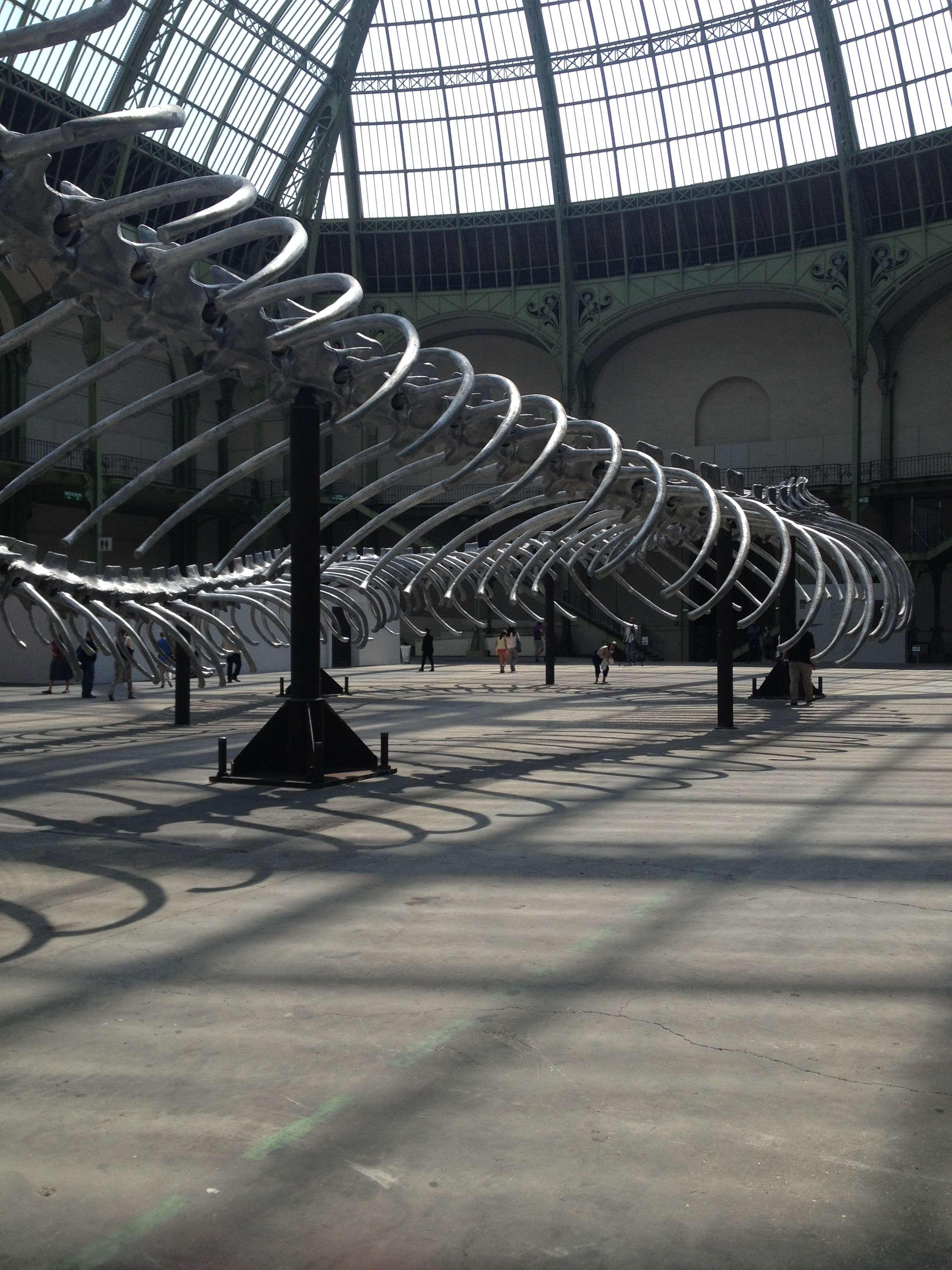 O parte din sarpele din aluminiu al lui Huang Yong Ping