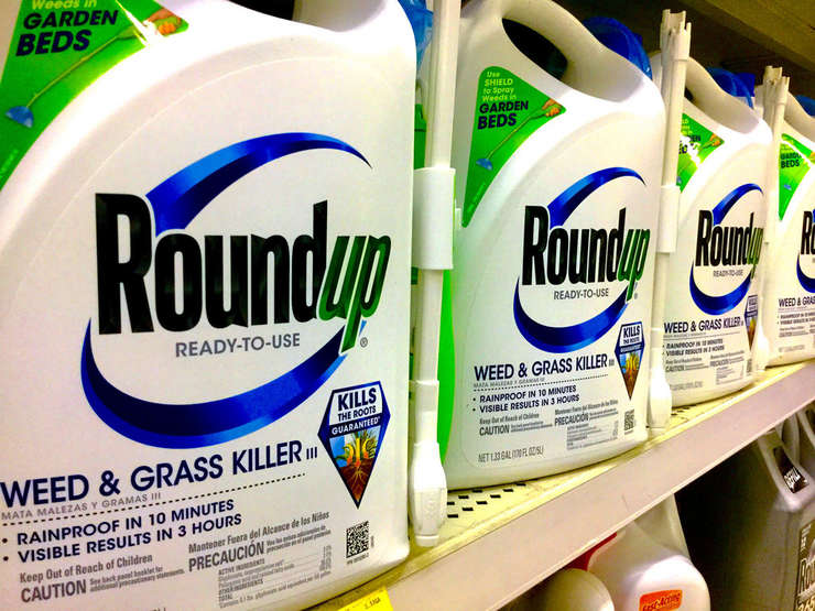 Monsanto a creat glifosatul în anii 1970, iar erbicidul este vândut în prezent în peste 160 de ţări