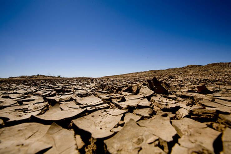 Pamant crapat din cauza secetei