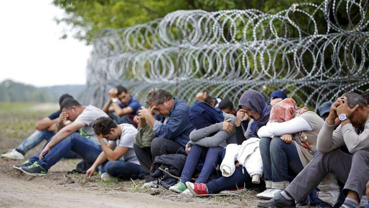 Sîrma ghimpata la frontiera Ungariei cu Serbia