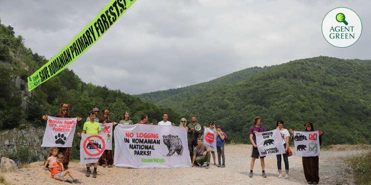 Protest al ecologiștilor, la Domogled, pentru salvarea pădurilor (Foto: site Agent Green)