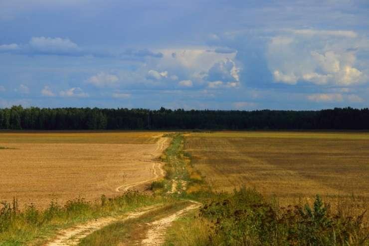 În noua Politică Agricolă Comună va fi o singură regulă care va duce la încasarea plății pe înverzire
